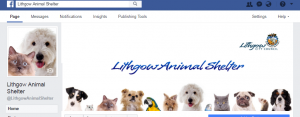 Link to Lithgow Animal Shelter Facebook Page
