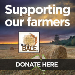 Donate at www.buyabale.com.au