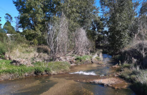 farmers creek