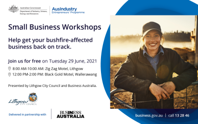 Lithgow's Small Businesses Get a Free Helping Hand For Business Challenges and Recovery From Bushfire and Other Events